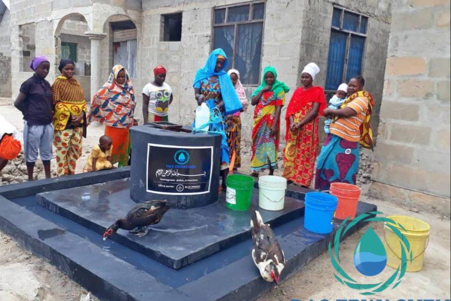 Nicht nur der Mensch profitiert von dem Brunnen, auch Viezucht ist ein bedeutender Bestandteil vieler Dörfer, weshalb die Tiertränke ein wichtiger Bestandteil ist. So geht kein Tropfen verloren.